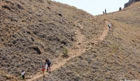 gallery/padar_island/the-path-to-the-hill.jpg