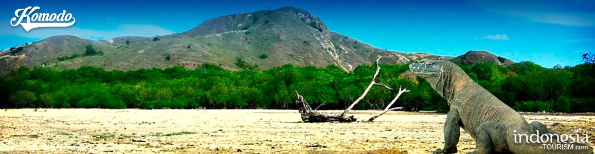 Ata Modo Tribe in Komodo Island